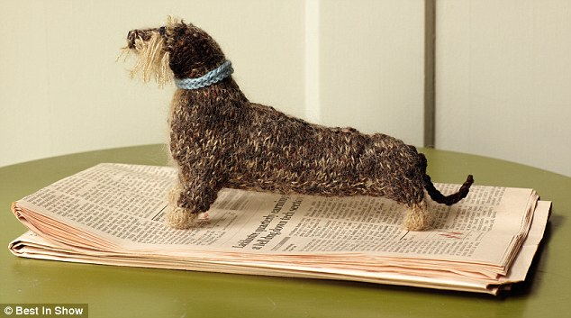 Holiday Gift Idea: Knit Your Dog (or Cat)!