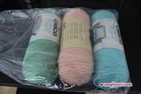 Caron Simply Soft Yarn in Sage #9705, Lt Country Peach #9737, Robins Egg #9780. 315 yards, $3.99 each.