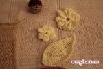 Crochet Sample - Flowers and Leaves