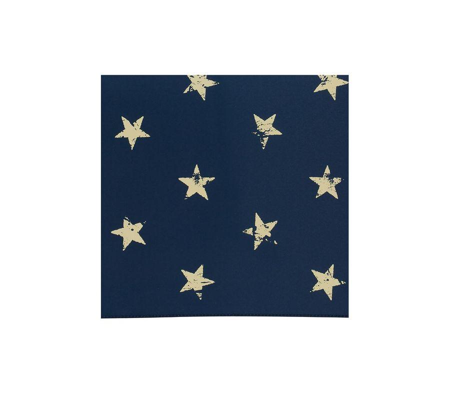VINTAGE STAR mini画像3