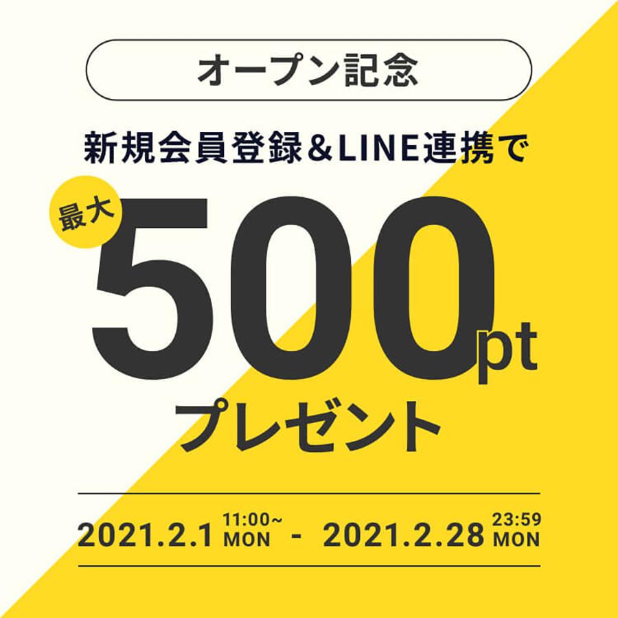 オープンん記念500ptプレゼント
