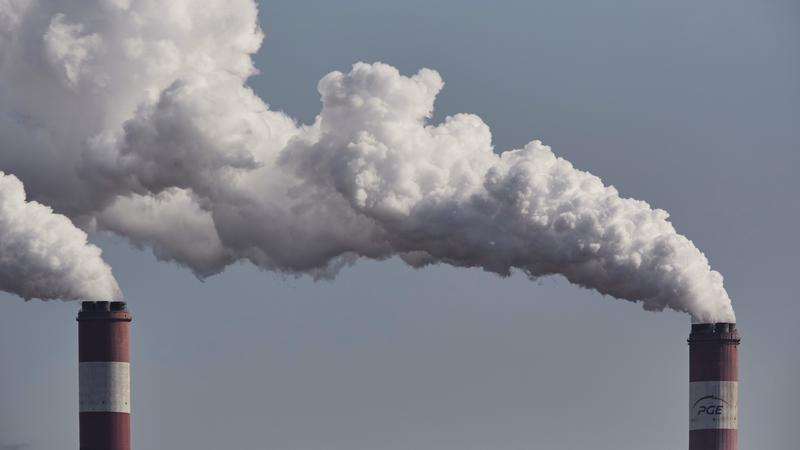 UN: World likely to miss climate targets despite pause in emissions