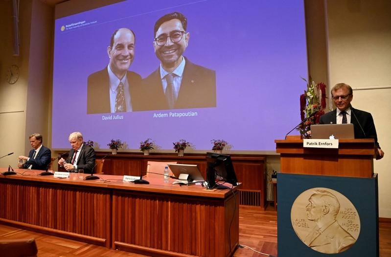 Two US scientists win Medicine Nobel for work on heat, touch