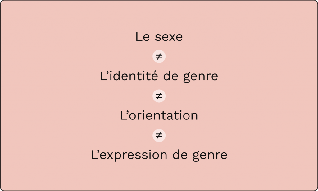 le sexe n'égal pas l'identité du genre, n'égal pas l'orientation, n'égal pas l'expression du genre