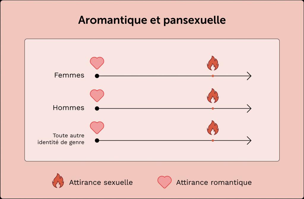 exemple de personne aromantique pansexuelle