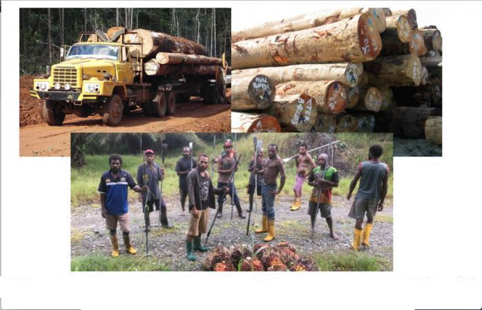 Sarawak Logging Giants To Be Held To Account Not By Malaysia But By PNG! MAJOR DEVELOPMENT