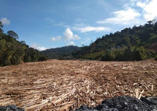 More Destruction Wreaked On Tragic Borneo Thanks To Lawless Greed