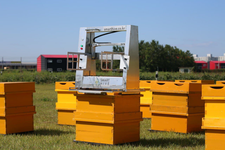 DAESUNG (SMART HIVE) Introduces Its Most Advanced Automatic Beekeeping System to the Market