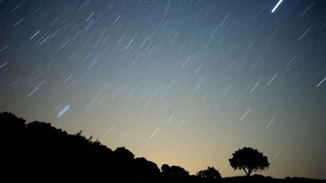 A meteor streaks across the sky against a field of stars during a meteorite shower early August 13, 2010 near Grazalema, southern Spain.    AFP PHOTO/ JORGE GUERRERO / AFP PHOTO / Jorge Guerrero