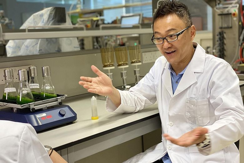 Mr Eugene Wang, co-founder and CEO of Sophie's Bionutrients, which is working on plant-based protein flours that can be used to make milk alternatives or energy beverages.