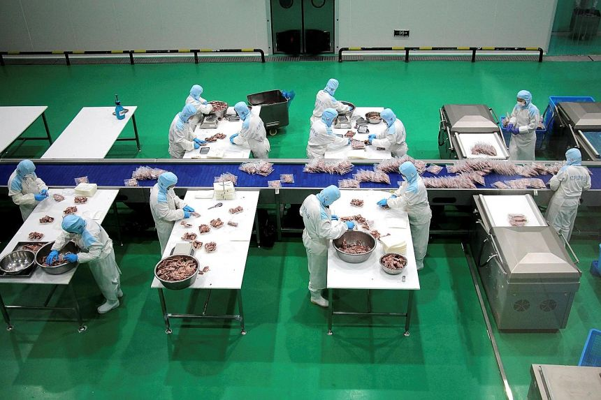 Workers packaging frozen steak for export at a beef processing plant in Shandong province on Sunday. Chinese firms shipped US$268 billion (S$359 billion) in goods in November, the most for any single month and more than 21 per cent higher than the sa