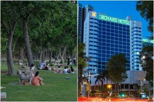 Orchard Hotel has also been fined and ordered to suspend bookings after enforcement officers found 11 people gathered in a room for a birthday celebration.