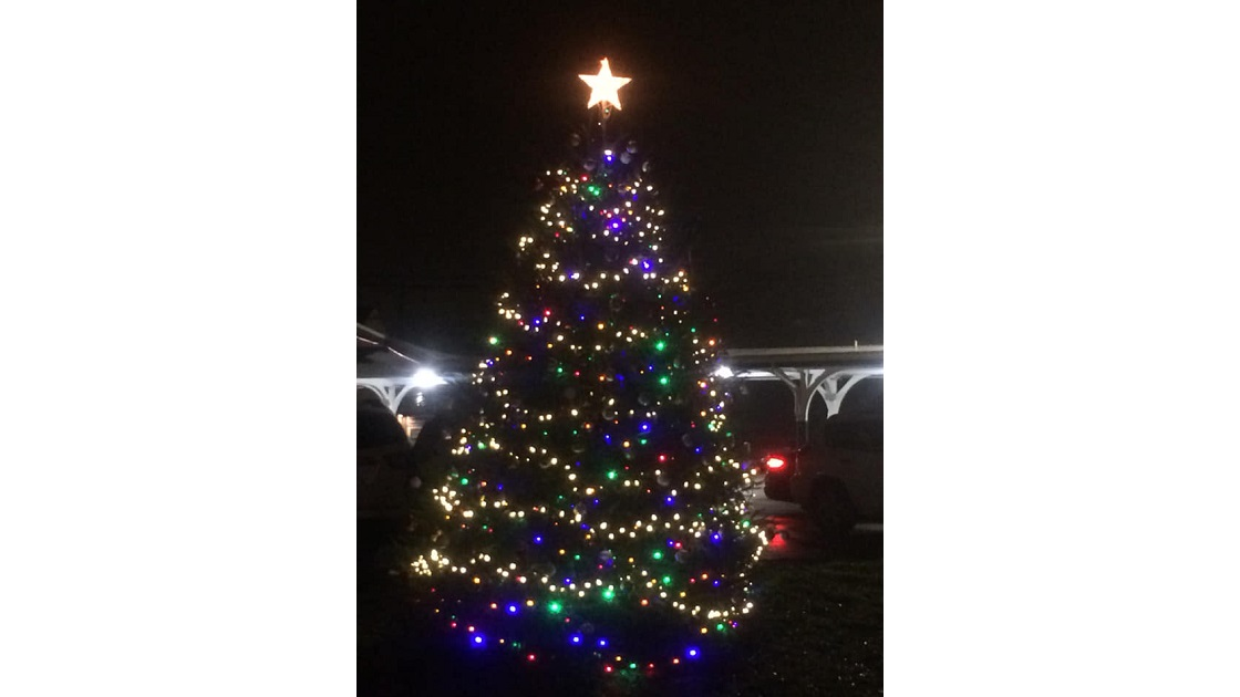 Lighting Of Glenside Christmas Tree In Cheltenham Township - Lighting Of Glenside Christmas Tree In Cheltenham Township