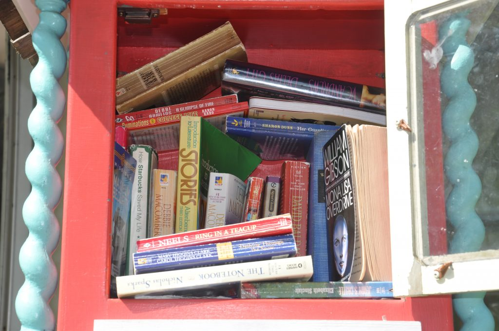 Inside the Little Library