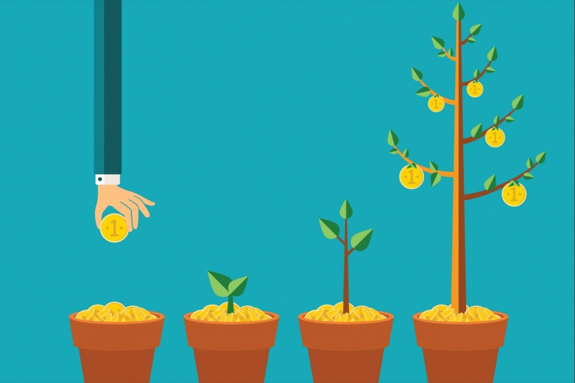Pesë fazat e ciklit të jetës së biznesit: Në cilën fazë jeni?