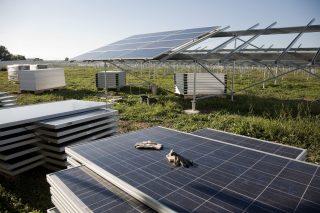 OP PIK: Dotace až 50 milionů korun na instalaci fotovoltaiky ve firmách