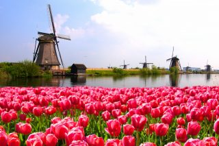 Prognózy nizozemské ekonomiky