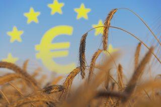 Nejenom sucho. Další ránu pro zemědělce přinese Brexit