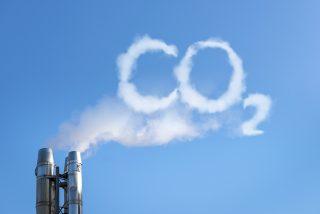 V Česku se rodí první uhlíkově neutrální firmy. Snižují emise, zbývající kompenzují