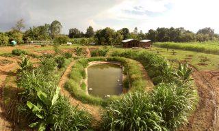 """Odborníci z """"MENDELU"""" pokračují v úspěšném projektu ČRA podporujícím drobné zemědělce v Etiopii"""