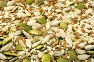 Na Kostarice vznikne nový podnik na výrobu semínek