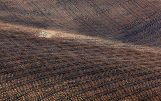 Sucho ničí pole i zeleň ve městech. Startup chce pomoci daty z vesmíru
