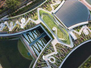 Bangkokská univerzita má největší střechu zachycující déšť v Asii. Umí zadržet 11 milionů litrů vody