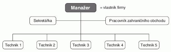 Organizační struktura malého podniku