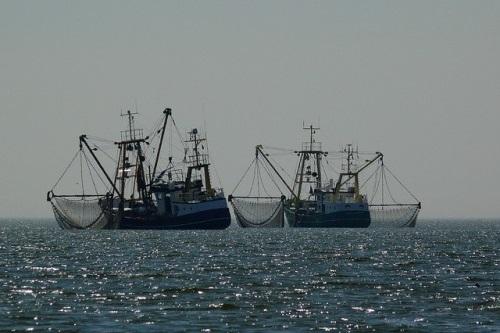Rybáři na Baltu musí výrazně omezit lov. Regulace dopadne i na turisty