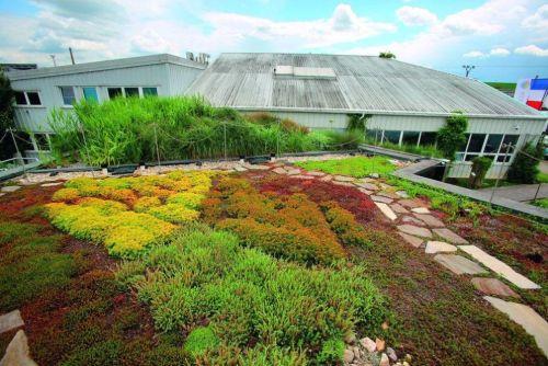 Metropole chce zanést povinné zelené střechy do stavebních předpisů