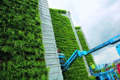 Zelená fasáda, ilustrační foto. Autor: Tomáš Novák/Euro