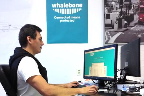 odborník počítač aplikace whalebone