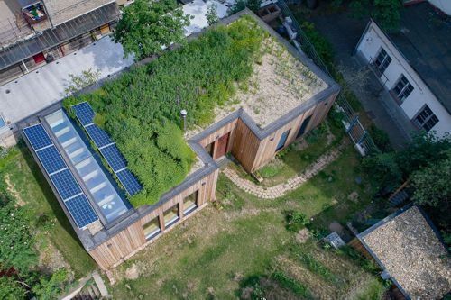 Na střeše mají mokřad. Čistí vodu a dodává okolí vlhkost