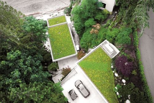Louka uprostřed města. Zelené střechy otevírají v zástavbě nový svět