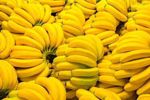 "Latinskou Ameriku straší ""banánový mor"", úroda je ohrožena"