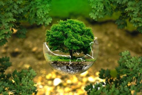 České firmy opět zaujaly svými produkty na ekologickém veletrhu v Hongkongu