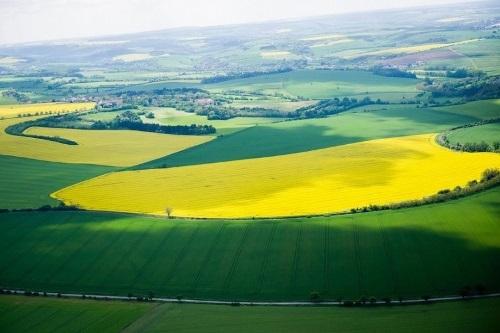 Zemědělství – statistický přehled