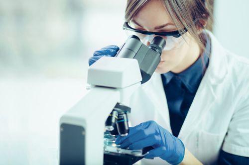 Věda a výzkum – statistický přehled