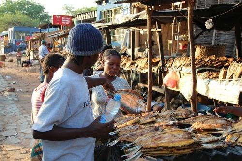 Zambie ustupuje od zavedení daně z prodeje, stav veřejných financí zůstává kritický