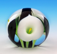 Scott Bayless - Mini Paperweight - White Calla Lily