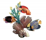 Bovano - W1622 - Reef Scene with Emperor Angel, Flame Angel and Rock Beauty