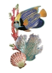 Bovano - W1612 - Emperor Angelfish with Sea Fan, Coral and Shell