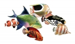 Bovano - W1631 - School of Six Reef Fish