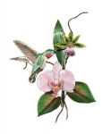 Bovano - W4707 - Hummingbird and Orchids