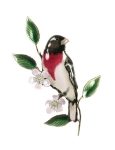 Bovano - W4116 - Rose Breasted Grosbeak