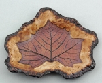Dirty Dog Pottery: Plate - Contoured Sycamore in Butternut