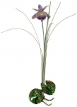 Bovano - F97P - Single Purple Iris with Patina Grass