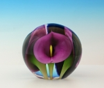 Scott Bayless - Mini Paperweight - Purple Calla Lily