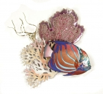 Bovano - W1646 - Blue Ring Angelfish, Coral & Seafan