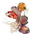 Bovano - W1648 - Angelfish and Butterfly Fish in Coral & Seafans